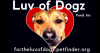 http://www.LUVOFDOGZ.ORG/wp-content/themes/humble/timthumb.php?q=100&w=650&h=350&src=/wp-content/uploads/2012/09/flod-first-slide-650x350.png